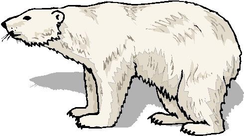 Free download clip art. Bears clipart polar bear