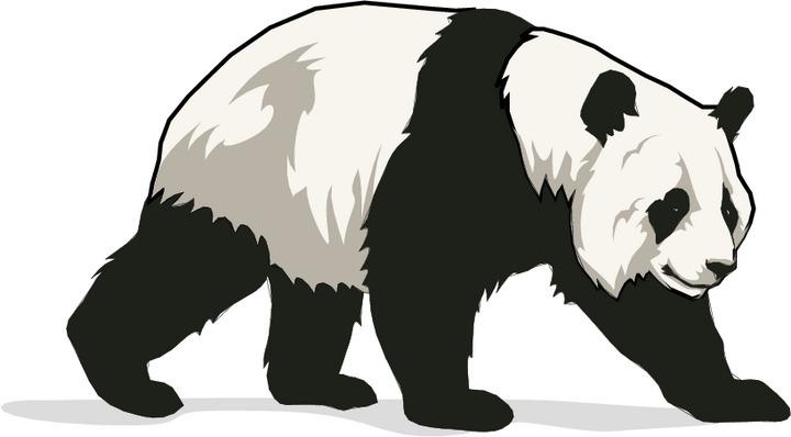 Free panda bear. Bears clipart real