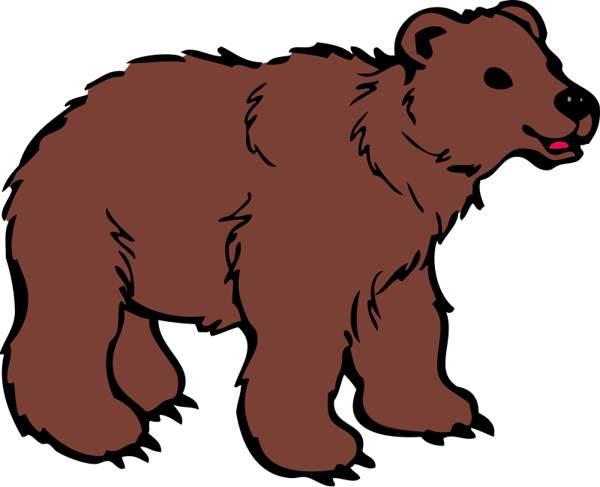 Bears clipart real. Brown bear clip art