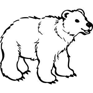 Bears clipart sleeping. Bear drawing at getdrawings