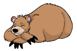 Bear black and white. Bears clipart sleeping