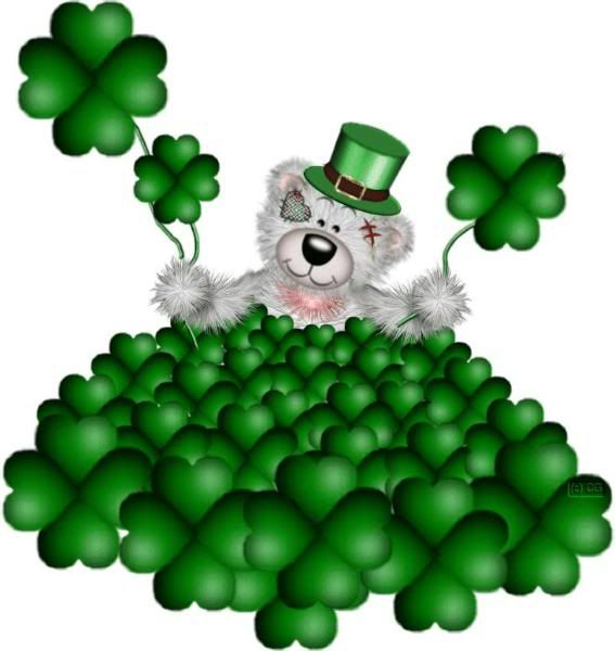 Bears clipart st patricks day.  best paddy s