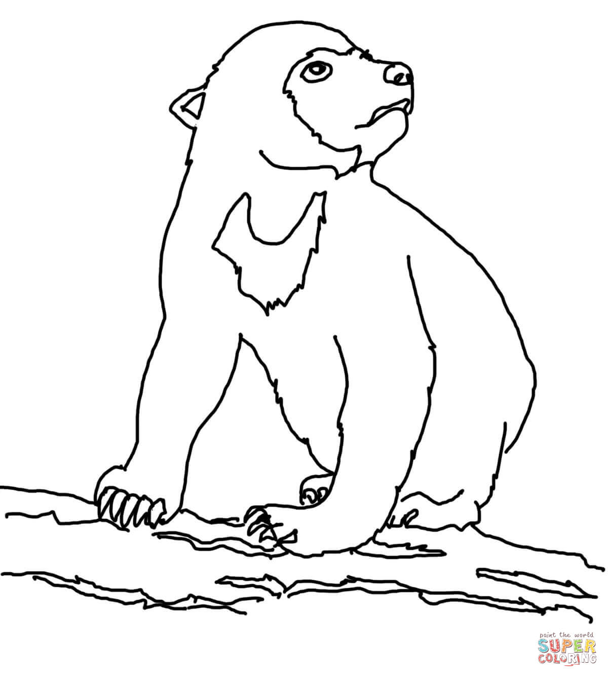 Bears clipart sun bear. Realistic coloring page free