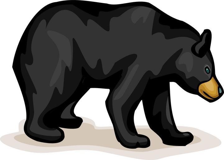 black bear clip. Bears clipart wild
