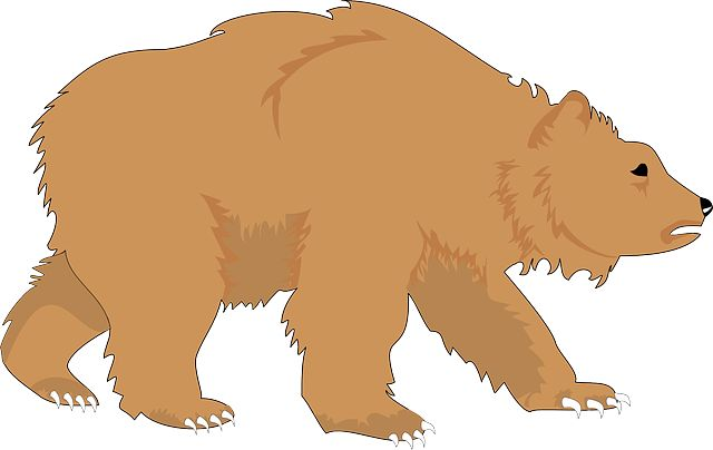Bears clipart wild.  best images on