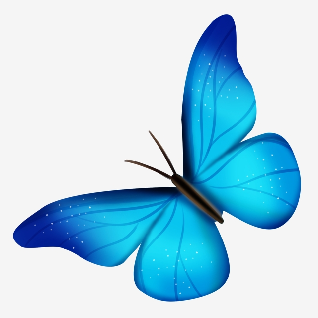 Illustration . Beautiful clipart blue butterfly