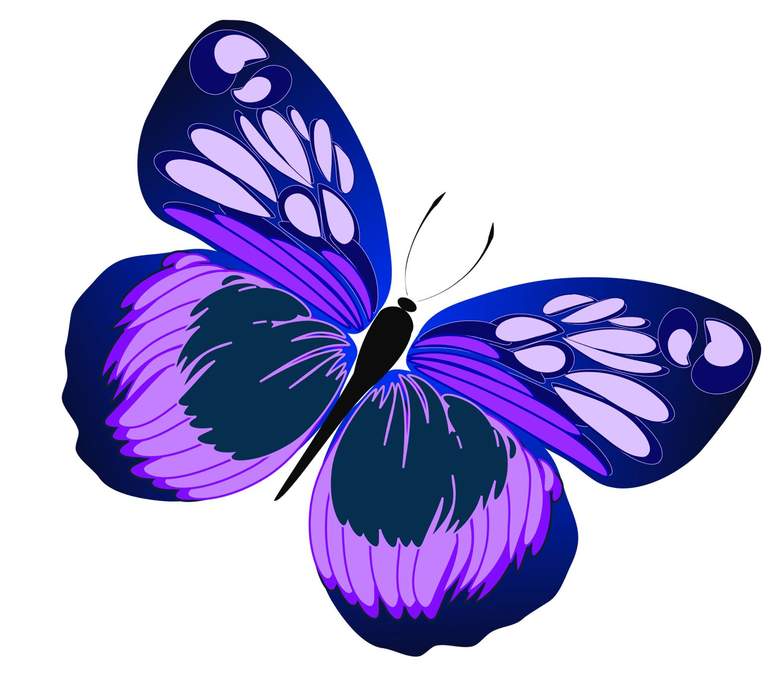 Pin by kathy fitz. Beautiful clipart blue butterfly