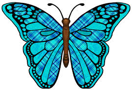 Free butterflies are insects. Beautiful clipart blue butterfly