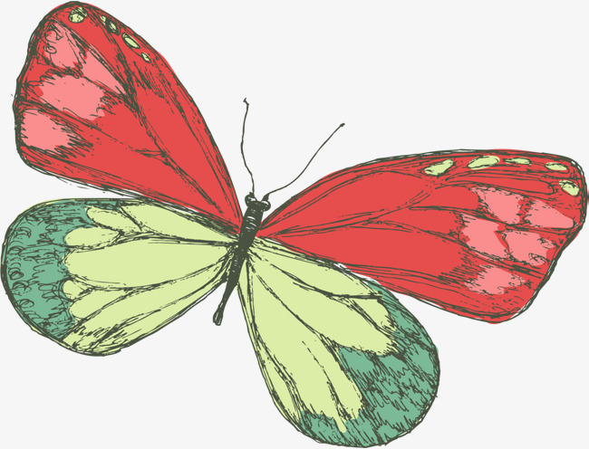 Beautiful clipart butterfly. Red fresh insects decorative