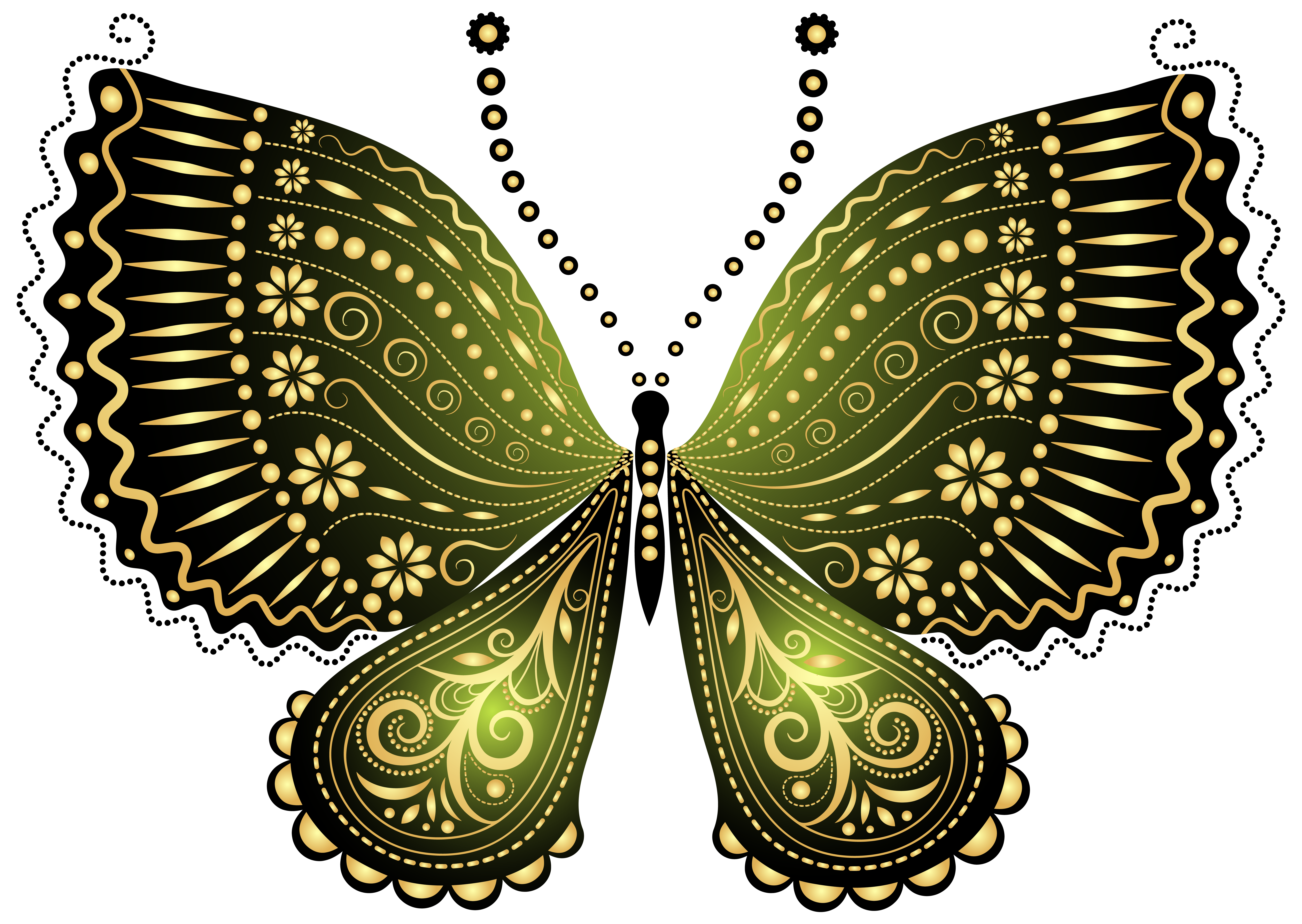 Green decorative png image. Beautiful clipart butterfly