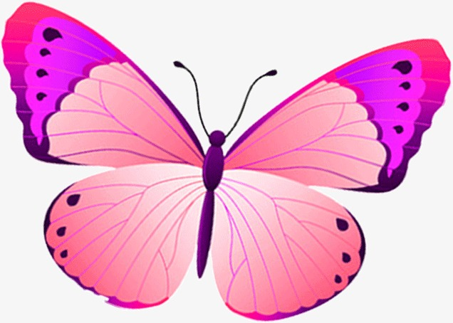 Cartoon pretty png image. Beautiful clipart butterfly