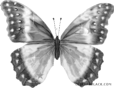 Beautiful clipart butterfly. Clipartblack com animal free