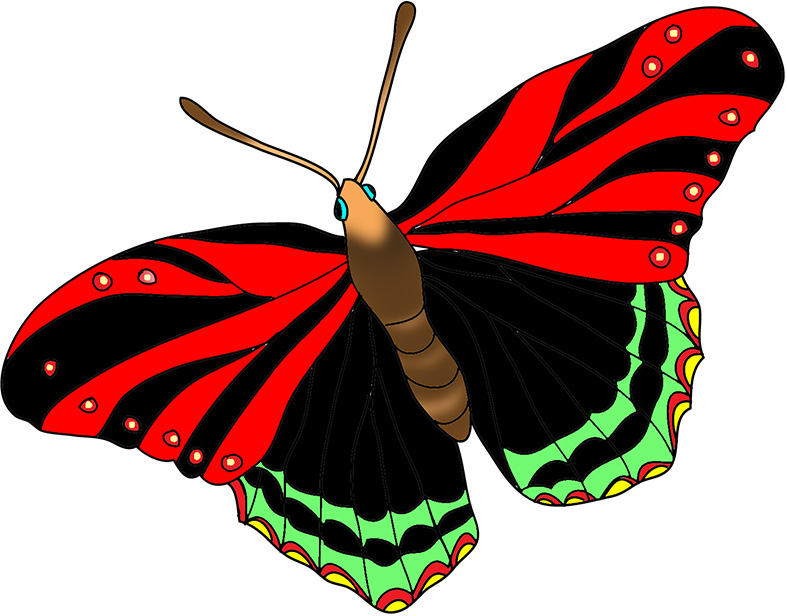 Beautiful images pink blackredbutterflyimage. Beauty clipart butterfly