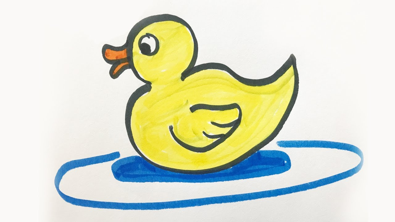 Beautiful clipart duck. Pictures for kids clip