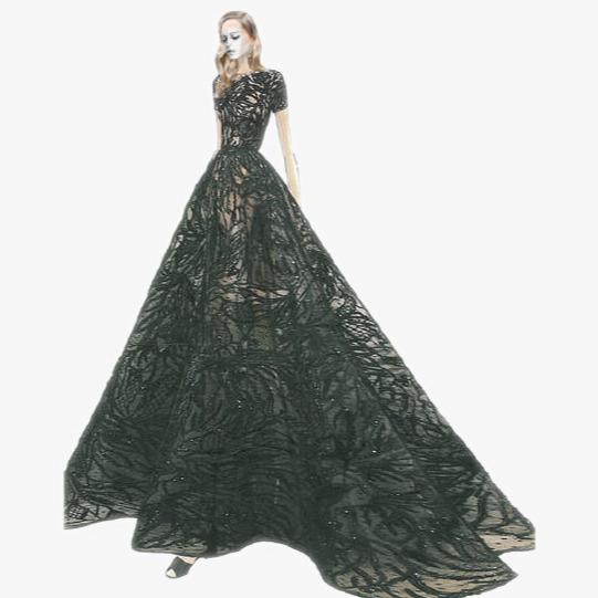 Black dress beauty dresses. Beautiful clipart evening gown