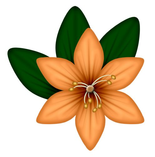best flowers images. Beautiful clipart flower