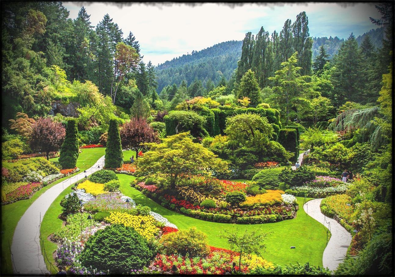 Flower landscape designs photos. Beautiful clipart garden