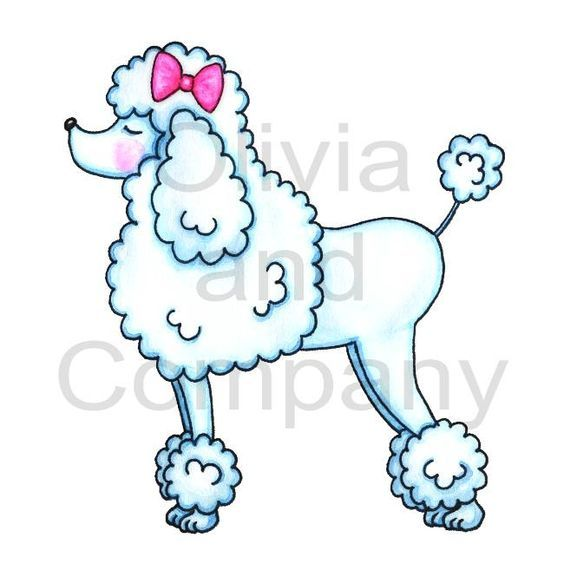 Pink drawing with bow. Beautiful clipart poodle