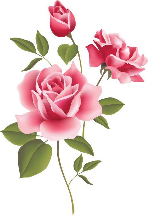 Clip art of flowers. Beautiful clipart rose