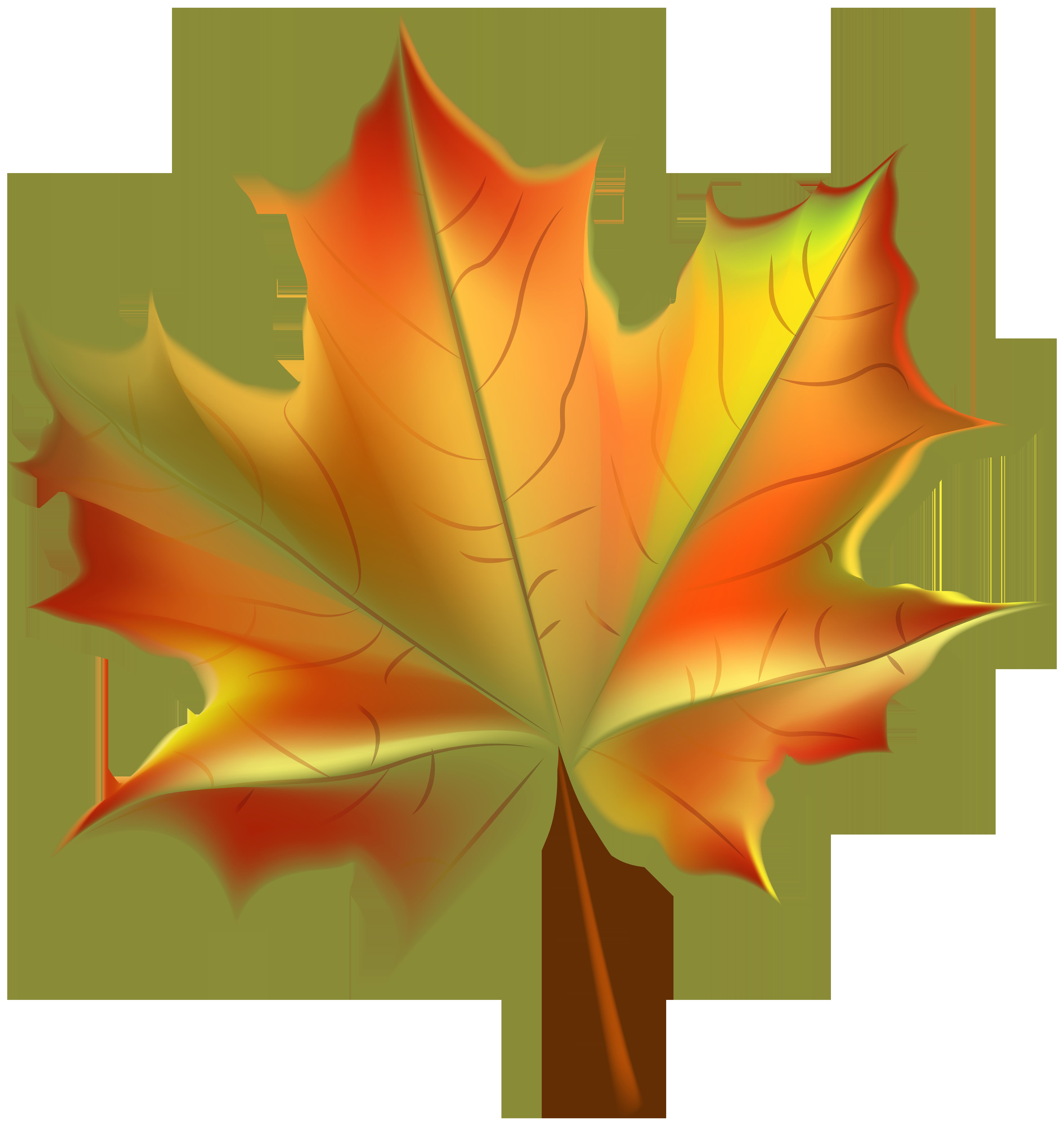 Leaf clipart transparent background. Beautiful autumn png clip