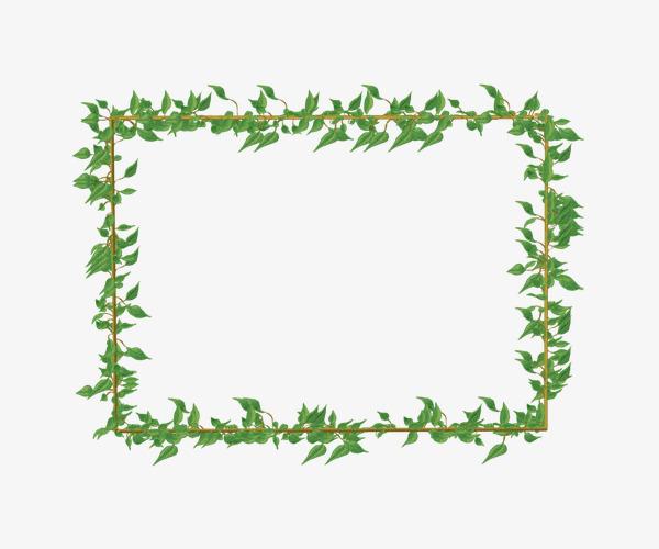 Green border pattern vines. Beautiful clipart vine