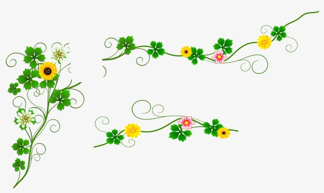 Beautiful clipart vine. Flower flowers png image