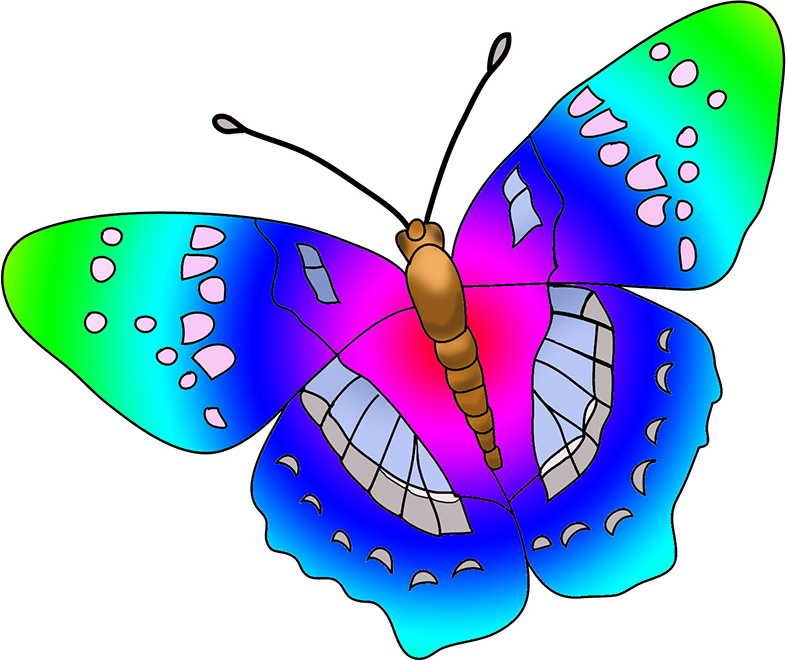 Beautiful images multi colored. Beauty clipart butterfly