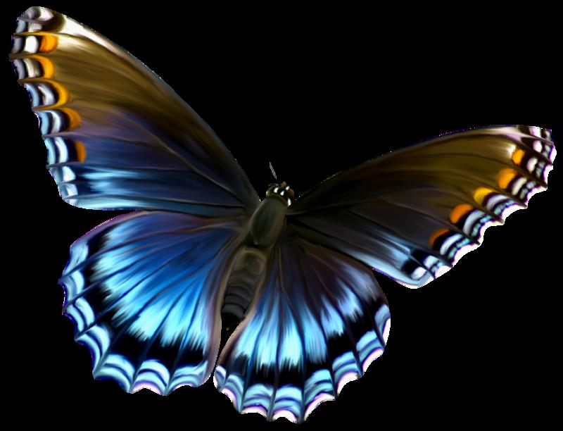 Deviantart more like beautiful. Beauty clipart butterfly
