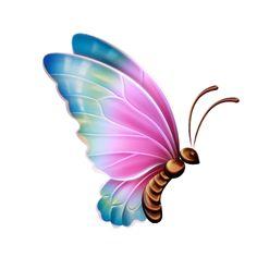 Dragonflies bugs butterflies tattoos. Beauty clipart butterfly
