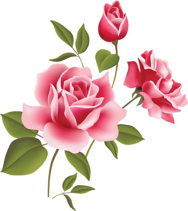 best clip art. Beauty clipart flower