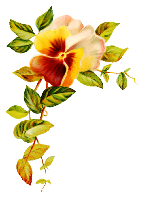 Digital scrapbooking flowers corner. Beauty clipart flower
