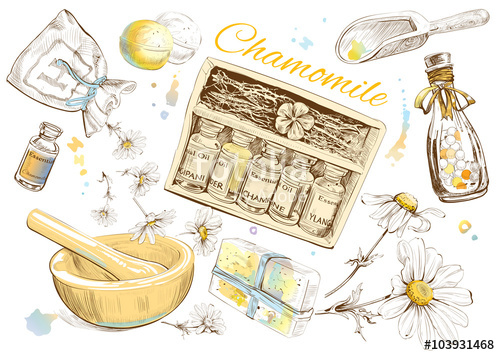 Beauty clipart natural beauty. Chamomile cosmetic set design