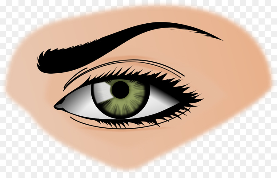 Eyebrow clip art woman. Beauty clipart pretty eye
