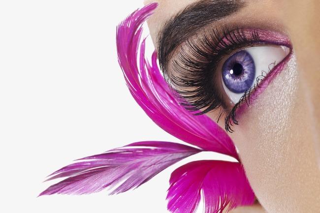 Beautiful eyes makeup cosmetic. Beauty clipart pretty eye