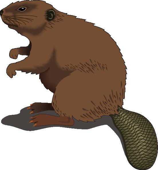 Beaver standing clip art. Groundhog clipart gopher