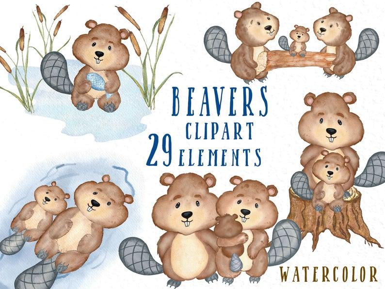 Beaver Clipart Sick - Glücklicher 1. Kanada-tag Mit Biber Und Karte - Free  Transparent PNG Download - PNGkey