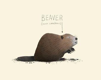 Beaver clipart canada july. Watercolor etsy nursery print