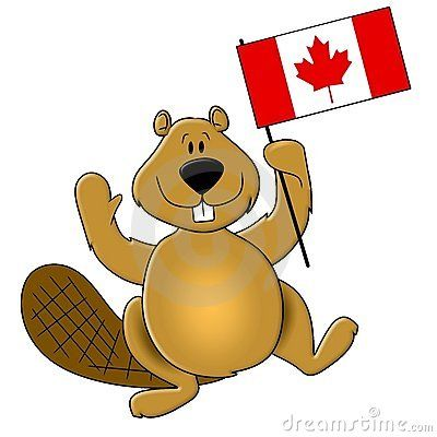 Beaver clipart canada july.  best day images