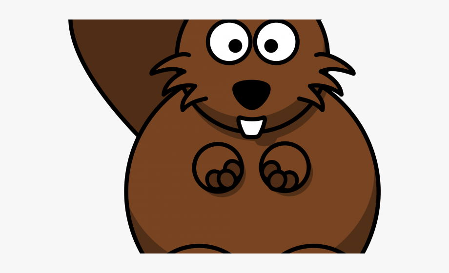 Beaver clipart head. Animal transparent background