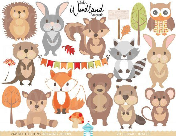 Mouse clipart woodland. Pin on pi