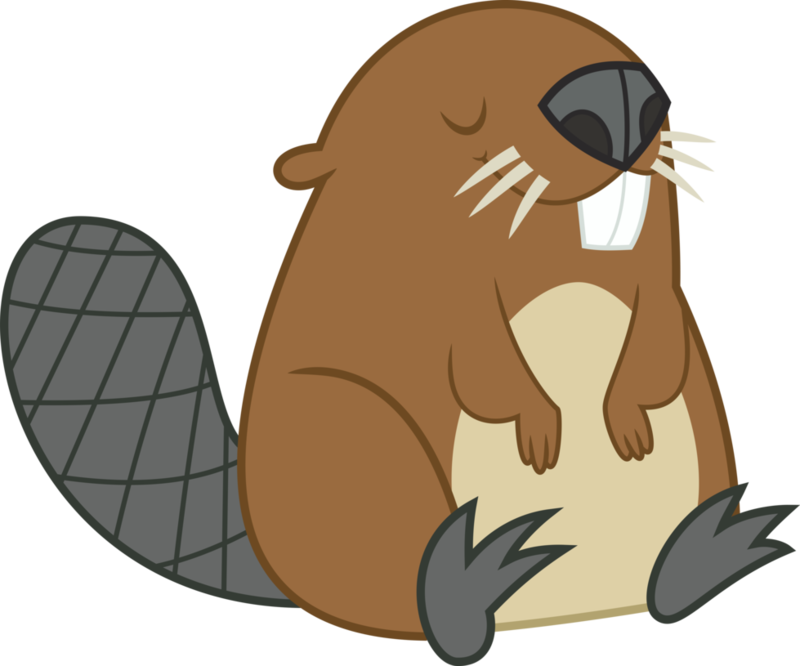 Download free png image. Beaver clipart transparent background