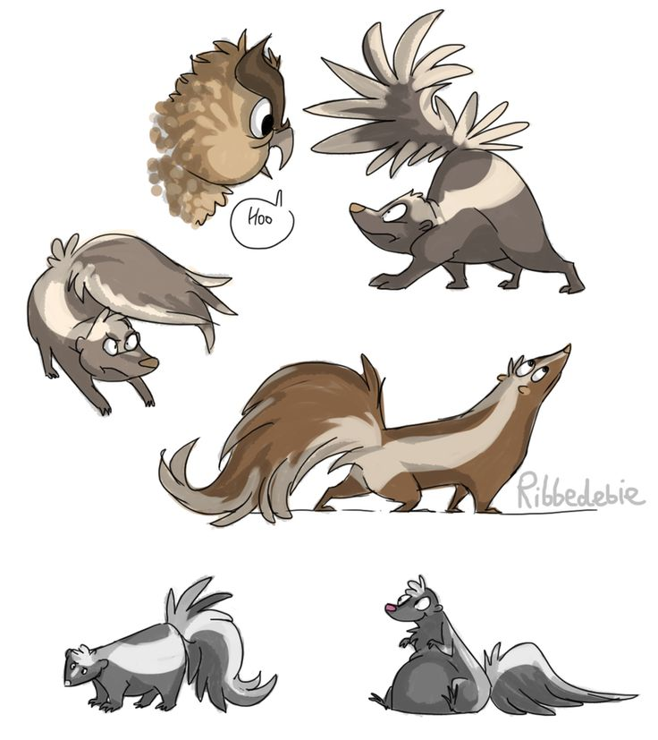 best skunk images. Beaver clipart zealous