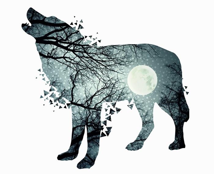 Stories of longing bear. Beaver clipart zealous