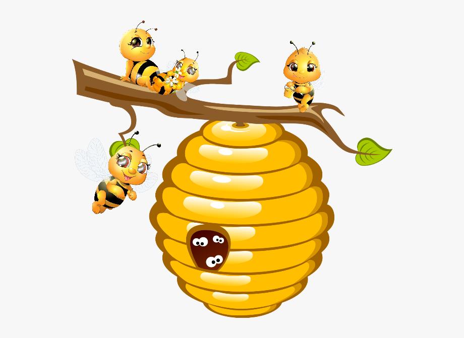 Bees hive transparent cartoon. Honeycomb clipart honey bee house