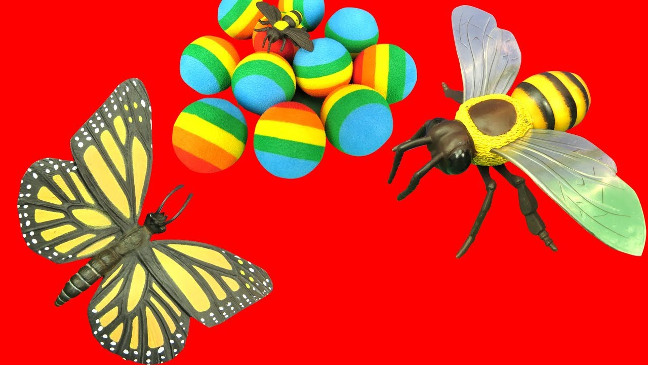 Bees clipart butterfly. Giant bee huge cute