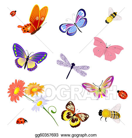 Clip art vector insects. Bee clipart butterfly