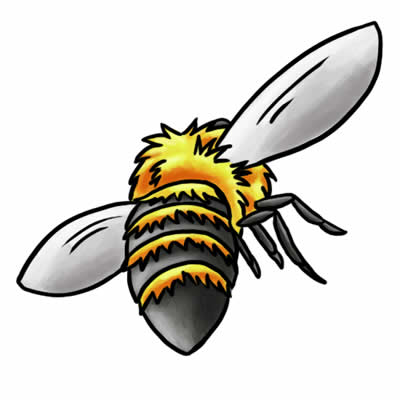 Bee clipart carpenter bee. Clipground