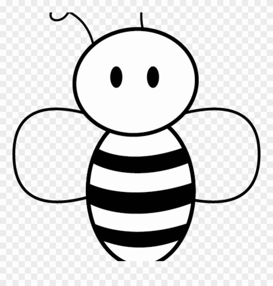 Honey bee pictures clip. Beehive clipart drawn