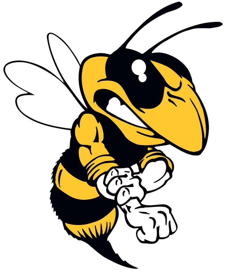 best hornets logos. Bee clipart hornet