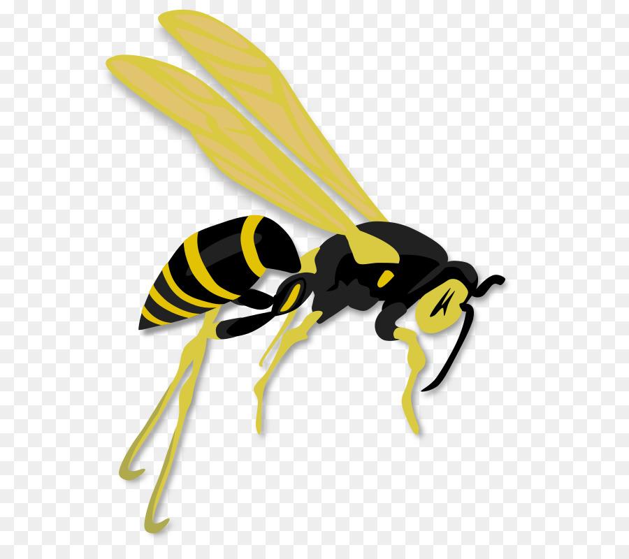 Hornet clipart bee. Download wasp clip art